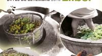 24 y25 de Septiembre. Feria del Llaurador, «Escaldà Pública de la Pansa» y Elaboración del vino Sábado 24 de septiembre 11:00 Apertura del mercado, granja escuela, juegos tradicionales e hinchable […]