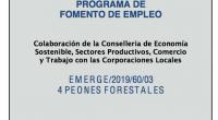 SUBVENCIÓN CONCEDIDA A ESTE AYUNTAMIENTO DENTRO DE LA CONVOCATORIA EMERGE 2019 cartel señalización EMERGE 2019